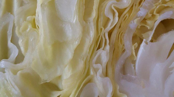 Spitskool met cashewnoten